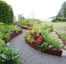 Edible Landscapes, the Newest Trend